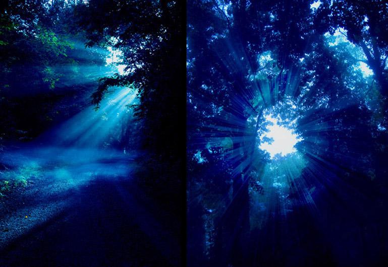 Matte paiting de la escena en el bosque. Las luces espectrales del escenario virtual potenciaban la estética gótica de la pieza.